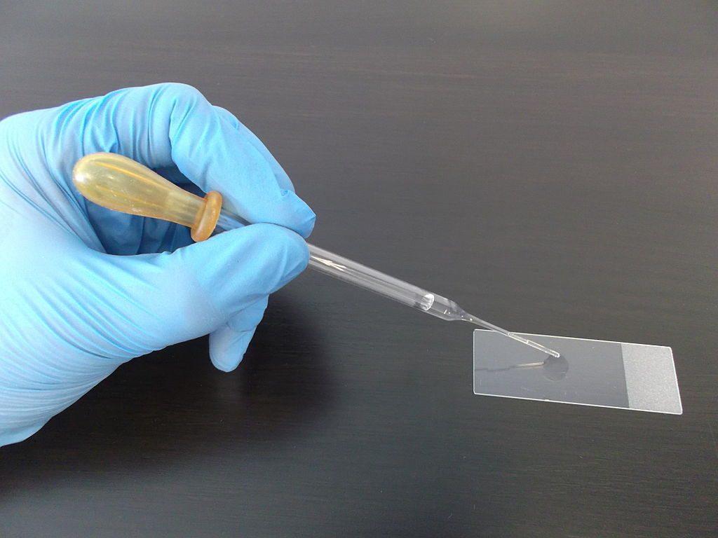 laboratorio-muestra