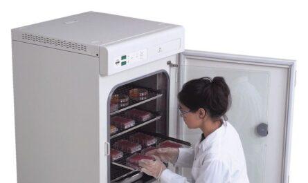 Estufa de laboratorio des